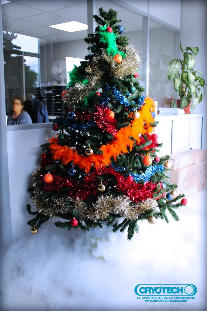Sapin CRYO'TECH dans le hall de nos locaux pou les fêtes de fin d'année